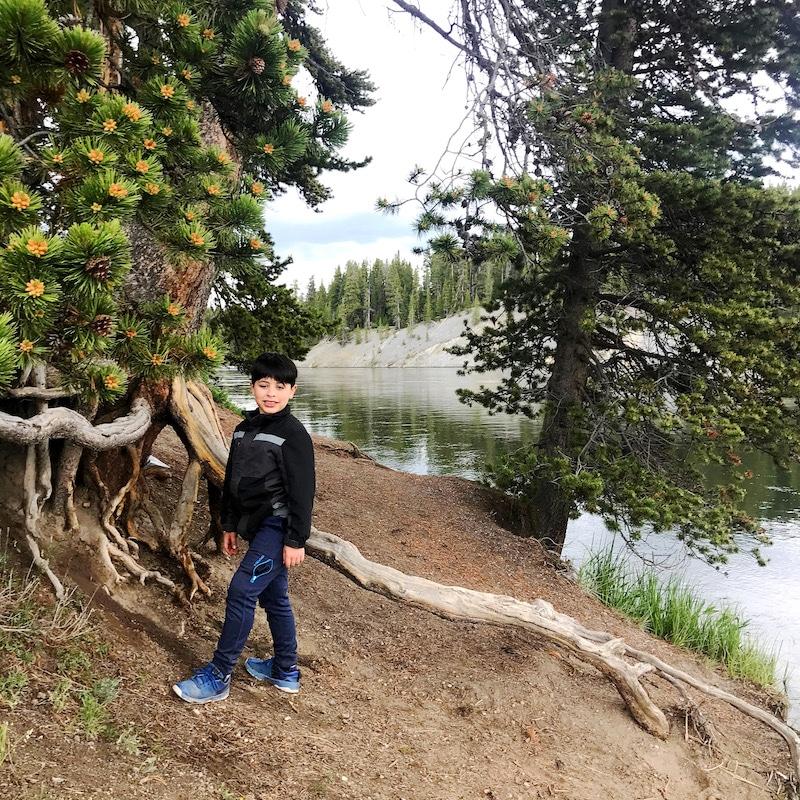Yellowstone with kids and car camping along the way - livingmividaloca.com