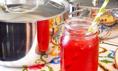 How to make hibiscus tea - livingmividaloca.com