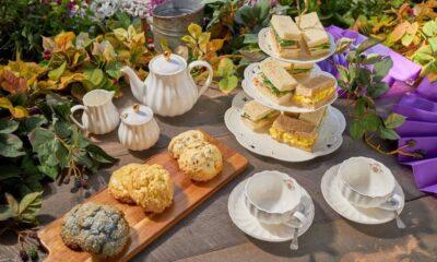 Cordelia's Tea Party at Knott's Berry Farm