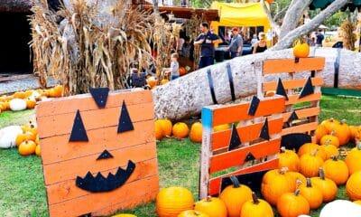 Halloween events in Orange County - livingmividdaloca.com